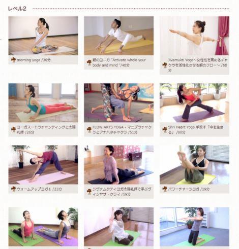 Yogalog レベル2